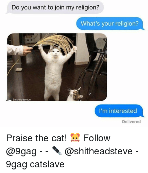9gag, Memes, and Religion: Do you want to join my religion?  What's your religion?  Shitheadsteve  I'm interested  Delivered Praise the cat! 🐹 Follow @9gag - - ✒️ @shitheadsteve - 9gag catslave