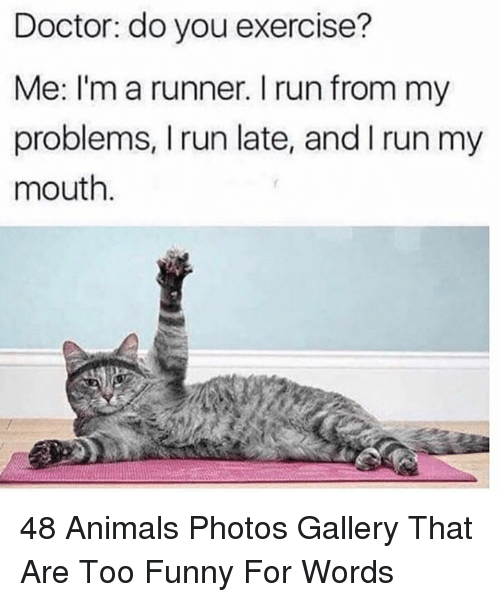 Animals, Doctor, and Funny: Doctor: do you exercise?  Me: I'm a runner. I run from my  problems, I run late, and I run my  mouth. 48 Animals Photos Gallery That Are Too Funny For Words