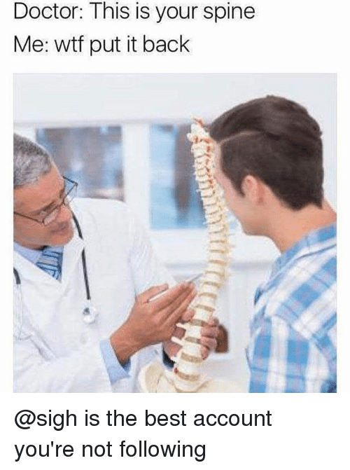 Doctor, Memes, and Wtf: Doctor: This is your spine  Me: wtf put it back @sigh is the best account you're not following