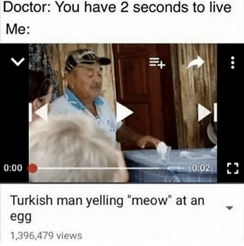 "turkish: Doctor: You have 2 seconds to live  Me:  0:02 E  0:00  Turkish man yelling ""meow"" at an  egg  1,396,479 views"