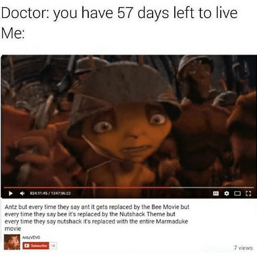 The Nutshack : Doctor: you have 57 days left to live  Me:  824 11:45/13423622  Antz but every time they say ant it gets replaced by the Bee Movie but  every time they say bee it's replaced by the Nutshack Theme but  every time they say nutshack it's replaced with the entire Marmaduke  movie  AntzVEVO  7 views