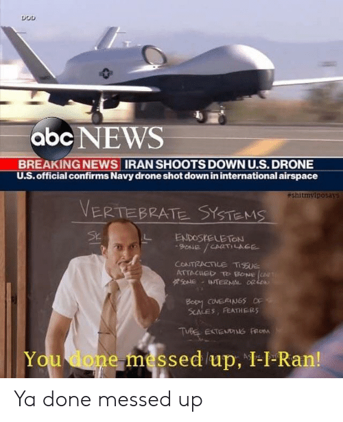 You Done Messed Up: DOD  abc NEWS  BREAKING NEWS IRAN SHOOTS DOWN U.S. DRONE  U.S.official confirms Navy drone shot down in international airspace  eshitmylposays  VERTEBRATE SYSTEMS  Sk  ENDOSKELETON  BONE  CPRTILAGE  CONTRACTILE TisSuE  ATTACUED  T BONE CO  ars&  INTERNAL OR L  Boty coNERINGS o  SCALES, FEATHERS  TUBE EXTENDING FROM  You done messed /up, 1-1-Ran! Ya done messed up