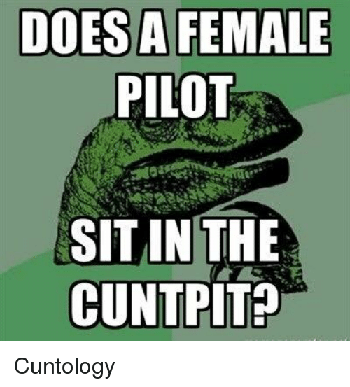 Memes, Cunt, and 🤖: DOES A FEMALE  PILOT  SIT IN THE  CUNT PIT Cuntology