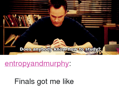 """Finals Got Me Like: Does anybody know how to study? <p><a href=""""http://entropyandmurphy.tumblr.com/post/117557766808/finals-got-me-like"""" class=""""tumblr_blog"""">entropyandmurphy</a>:</p>  <blockquote><p>Finals got me like</p></blockquote>"""