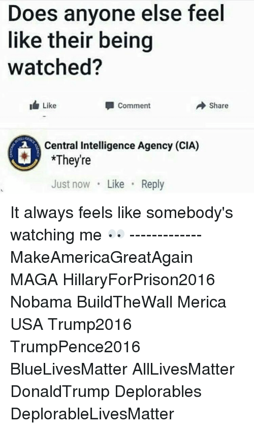 Hillaryforprison2016: Does anyone else feel  like their being  watched?  Like  A Share  Comment  Central Intelligence Agency (CIA)  *They're  Just now  Like  Reply It always feels like somebody's watching me 👀 ------------- MakeAmericaGreatAgain MAGA HillaryForPrison2016 Nobama BuildTheWall Merica USA Trump2016 TrumpPence2016 BlueLivesMatter AllLivesMatter DonaldTrump Deplorables DeplorableLivesMatter