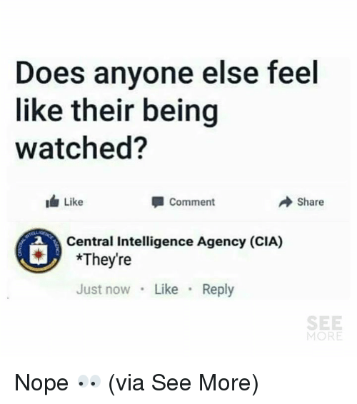Memes, Nope, and 🤖: Does anyone else feel  like their being  watched?  Like  Comment  Share  Central Intelligence Agency (CIA)  *They're  Just now Like Reply  SEE  MORE Nope 👀  (via See More)