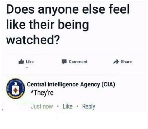 Humans of Tumblr, Cia, and Intelligence: Does anyone else feel  like their being  watched?  Like  Comment  → Share  2  Central Intelligence Agency (CIA)  *They're  Just now Like Reply