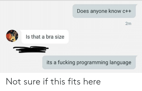 bra: Does anyone know c++  2m  Is that a bra size  its a fucking programming language Not sure if this fits here
