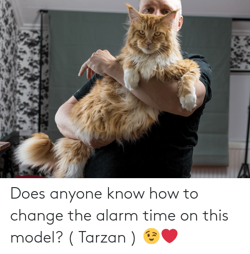 Tarzan: Does anyone know how to change the alarm time on this model? ( Tarzan ) 😉❤️