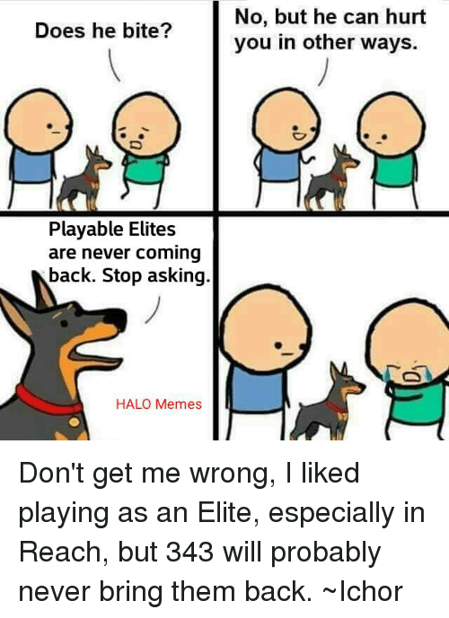 Halo Meme: Does he bite?  Playable Elites  are never coming  back. Stop asking  HALO Memes  No, but he can hurt  you in other ways. Don't get me wrong, I liked playing as an Elite, especially in Reach, but 343 will probably never bring them back. ~Ichor