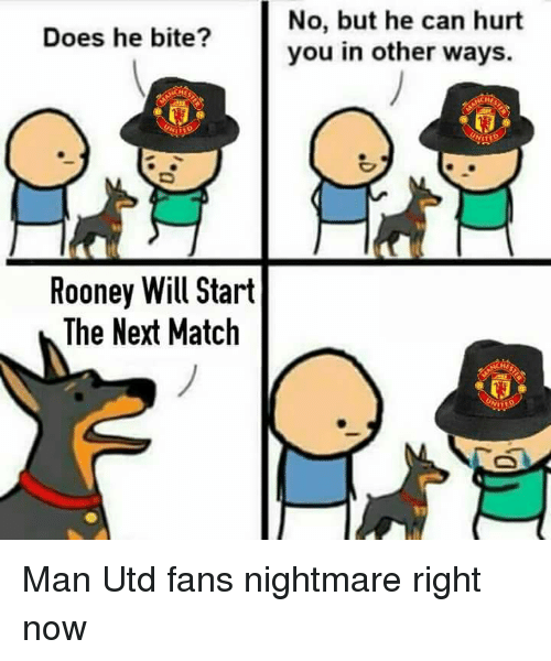 memes: Does he bite?  Rooney Will Start  The Next Match  No, but he can hurt  you in other ways. Man Utd fans nightmare right now