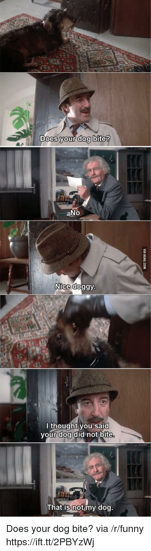 Does Your Dog Bite: Does vour doo bite  aNo  Nice doggy  l thought you said  your doa did not bite  That is notmy dog Does your dog bite? via /r/funny https://ift.tt/2PBYzWj