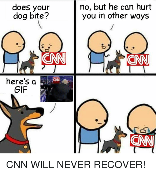 cnn.com, Gif, and Memes: does your  dog bite?  no, but he can hurt  you in other ways  here's a  GIF CNN WILL NEVER RECOVER!