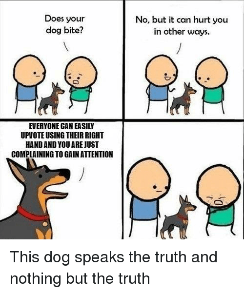 Does Your Dog Bite: Does your  dog bite?  No, but it can hurt you  in other ways  EVERYONE CAN EASILY  UPVOTE USING THEIR RIGHT  HAND AND YOU AREJUST  COMPLAINING TO GAIN ATTENTION This dog speaks the truth and nothing but the truth