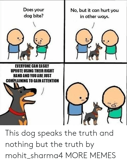 Does Your Dog Bite: Does your  dog bite?  No, but it can hurt you  in other ways  EVERYONE CAN EASILY  UPVOTE USING THEIR RIGHT  HAND AND YOU AREJUST  COMPLAINING TO GAIN ATTENTION This dog speaks the truth and nothing but the truth by mohit_sharma4 MORE MEMES