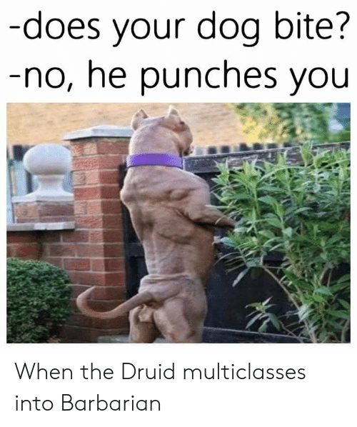 Does Your Dog Bite: -does your dog bite?  -no, he punches you When the Druid multiclasses into Barbarian