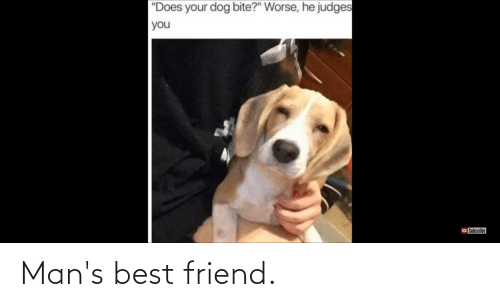 """Does Your Dog Bite: """"Does your dog bite?"""" Worse, he judges  you  Subscribe Man's best friend."""