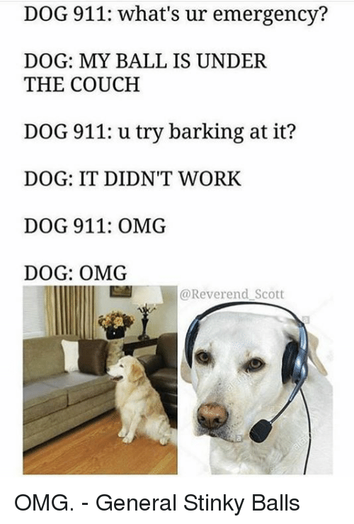 Who Do You Call About A Barking Dog