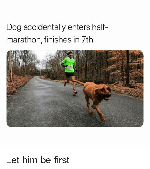 Funny, Dog, and Marathon: Dog accidentally enters half-  marathon, finishes in 7th Let him be first