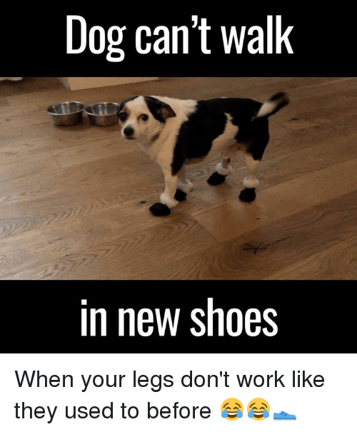 When Your Legs Dont Work
