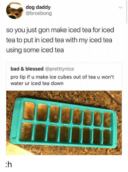 Bad, Blessed, and Memes: dog daddy  @broebong  so you just gon make iced tea for iced  tea to put in iced tea with my iced tea  using some iced tea  bad & blessed @pretttynice  pro tip if u make ice cubes out of tea u won't  water ur iced tea down :h