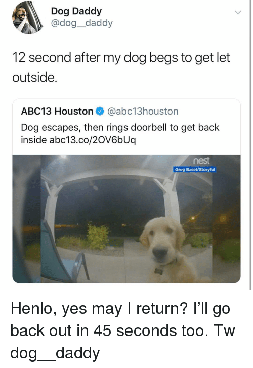 Henlo: Dog Daddy  @dog_daddy  12 second after my dog begs to get let  outside.  ABC13 Houston@abc13houstorn  Dog escapes, then rings doorbell to get back  inside abc13.co/20V6bUq  Greg Basel/Storyful Henlo, yes may I return? I'll go back out in 45 seconds too. Tw dog__daddy