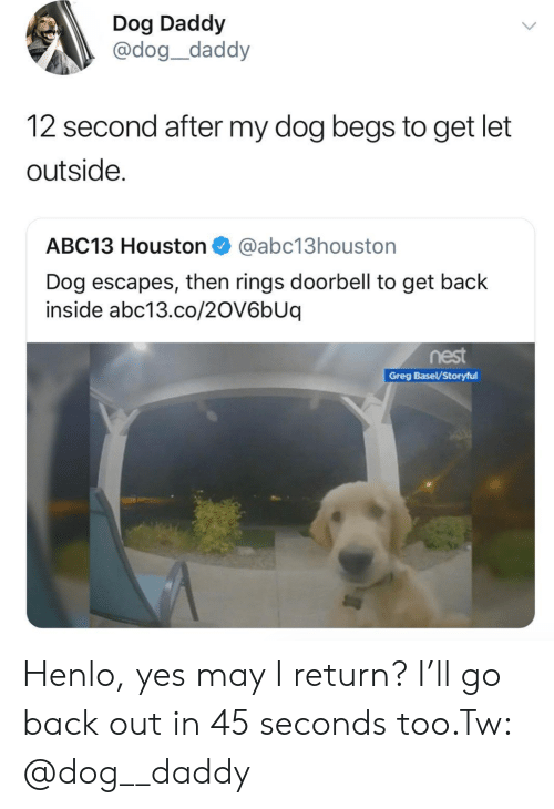 Henlo: Dog Daddy  @dog_daddy  12 second after my dog begs to get let  outside.  ABC13 Houston@abc13houston  Dog escapes, then rings doorbell to get back  inside abc13.co/2OV6bUq  nest  Greg Basel/Storyful Henlo, yes may I return? I'll go back out in 45 seconds too.Tw: @dog__daddy