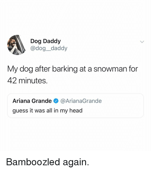 arianagrande: Dog Daddy  @dog_daddy  My dog after barking at a snowman for  42 minutes.  Ariana Grande@ArianaGrande  guess it was all in my head Bamboozled again.