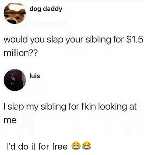 Funny, Free, and Dog: dog daddy  would you slap your sibling for $1.5  million??  luis  I slap my sibling for fkin looking at  me I'd do it for free 😂😂