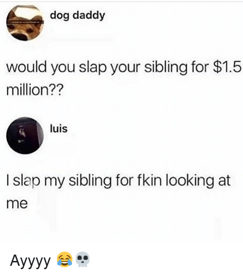 Funny, Dog, and Looking: dog daddy  would you slap your sibling for $1.5  million??  luis  I slap my sibling for fkin looking at  me Ayyyy 😂💀