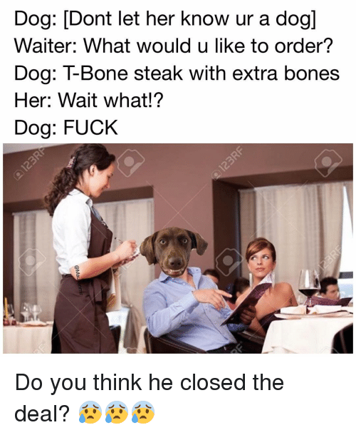 Bones, Memes, and 🤖: Dog: Dont let her know ur a dogl  Waiter: What would u like to order?  Dog: T-Bone steak with extra bones  Her: Wait what!?  Dog: FUCK Do you think he closed the deal? 😰😰😰