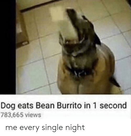 1 Second: Dog eats Bean Burrito in 1 second  783,665 views me every single night