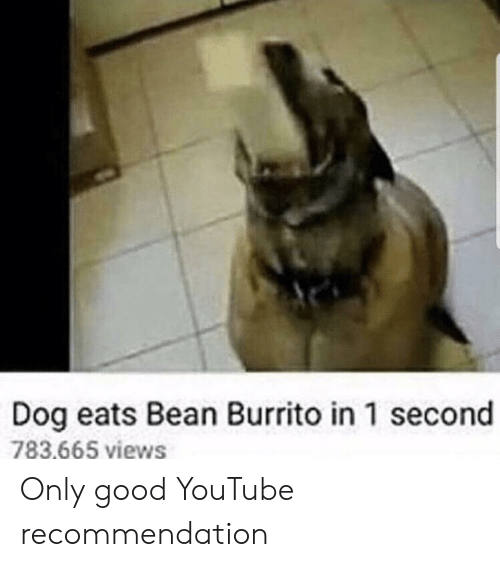 1 Second: Dog eats Bean Burrito in 1 second  783.665 views Only good YouTube recommendation