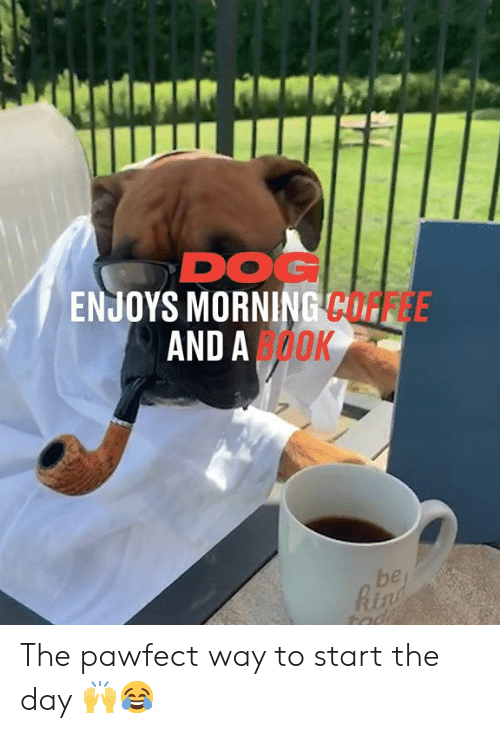 tad: DOG  ENJOYS MORNING COFFEE  AND AOOK  be  Rin  tad The pawfect way to start the day 🙌😂