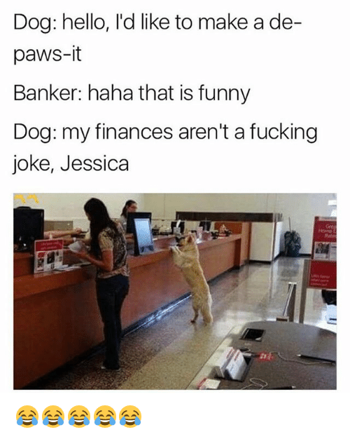 Fucking, Funny, and Hello: Dog: hello, I'd like to make a de-  paws-it  Banker: haha that is funny  Dog: my finances aren't a fucking  joke, Jessica  Rate 😂😂😂😂😂