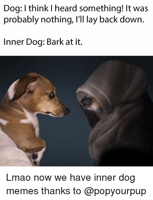 Lay's, Memes, and 🤖: Dog: I think l heard something! It was  probably nothing, I'll lay back down  Inner Dog: Bark at it.  apopyourpu Lmao now we have inner dog memes thanks to @popyourpup