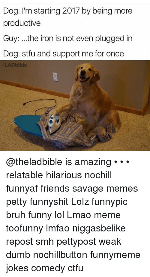 Ctfu, Dumb, and Ironic: Dog: I'm starting 2017 by being more  productive  Guy: ..the iron is not even plugged in  Dog: stfu and support me for once  ELAD bible @theladbible is amazing • • • relatable hilarious nochill funnyaf friends savage memes petty funnyshit Lolz funnypic bruh funny lol Lmao meme toofunny lmfao niggasbelike repost smh pettypost weak dumb nochillbutton funnymeme jokes comedy ctfu