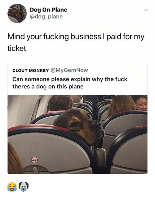 Fucking, Memes, and Business: Dog On Plane  @dog plane  Mind your fucking business l paid for my  ticket  CLOUT MONKEY @MyGemNow  Can someone please explain why the fuck  theres a dog on this plane 😂🐶