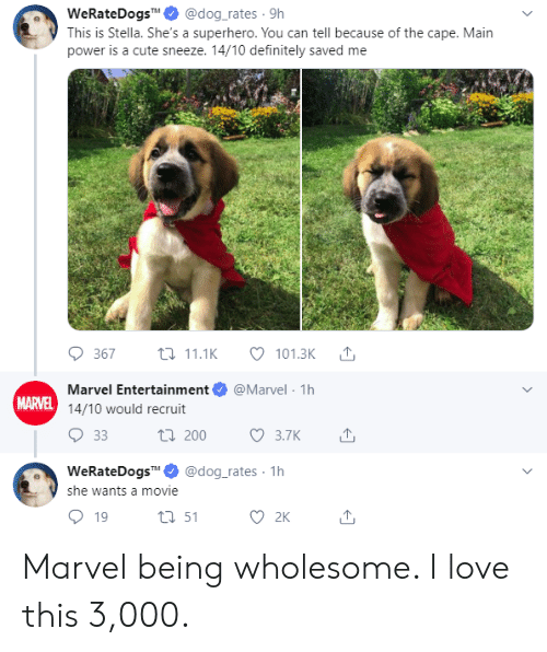 superhero: @dog_rates 9h  WeRateDogsM  This is Stella. She's a superhero. You can tell because of the cape. Main  power is a cute sneeze. 14/10 definitely saved me  t11.1K  367  101.3K  @Marvel 1h  Marvel Entertainment  MARVEL 14/10 would recruit  ti 200  33  3.7К  @dog_rates 1h  WeRateDogsM  she wants a movie  2K  t51  19 Marvel being wholesome. I love this 3,000.