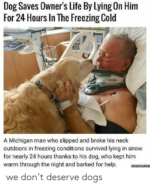 freezing: Dog Saves Owner's Life By Lying On Him  For 24 Hours In The Freezing Cold  A Michigan man who slipped and broke his neck  outdoors in freezing conditions survived lying in snow  for nearly 24 hours thanks to his dog, who kept him  warm through the night and barked for help we don't deserve dogs