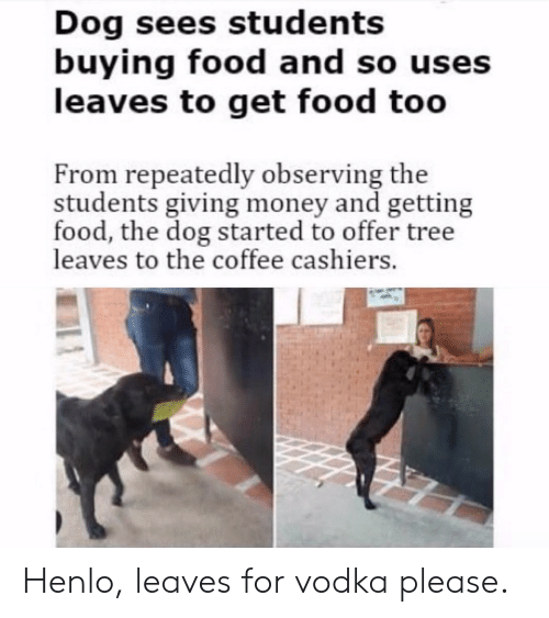 Henlo: Dog sees students  buying food and so uses  leaves to get food too  From repeatedly observing the  students giving money and getting  food, the dog started to offer tree  leaves to the coffee cashiers Henlo, leaves for vodka please.