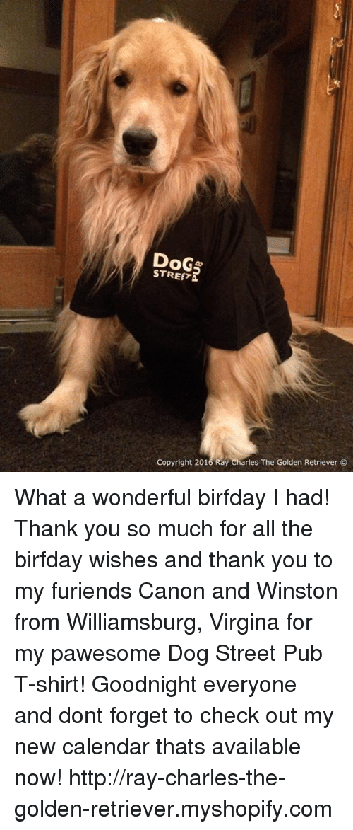 Birfday: DoG  STREET  Copyright 2016 Ray Charles The Golden Retriever What a wonderful birfday I had! Thank you so much for all the birfday wishes and thank you to my furiends Canon and Winston from Williamsburg, Virgina for my pawesome Dog Street Pub T-shirt! Goodnight everyone and dont forget to check out my new calendar thats available now! http://ray-charles-the-golden-retriever.myshopify.com