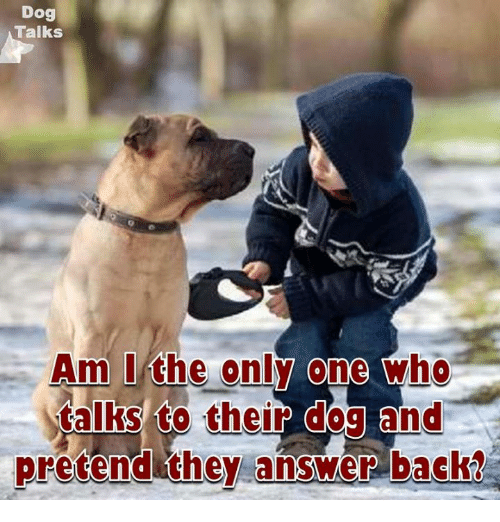 Memes, Only One, and Am I the Only One: Dog  Talks  Am I the only one  who  talks to  their dog and  pretend they answer back