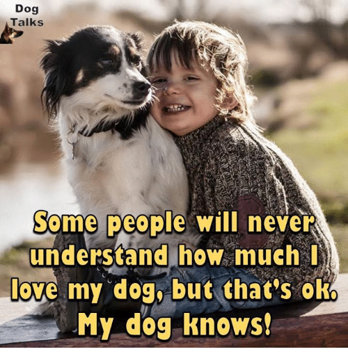 love my dogs: Dog  Talks  Some people will never  understand how much I  love my dog, but that's oko  My dog knows!
