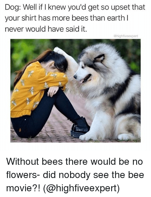 the bee movie: Dog: Well if I knew you'd get so upset that  your shirt has more bees than earth l  never would have said it.  @highfiveexpert Without bees there would be no flowers- did nobody see the bee movie?! (@highfiveexpert)