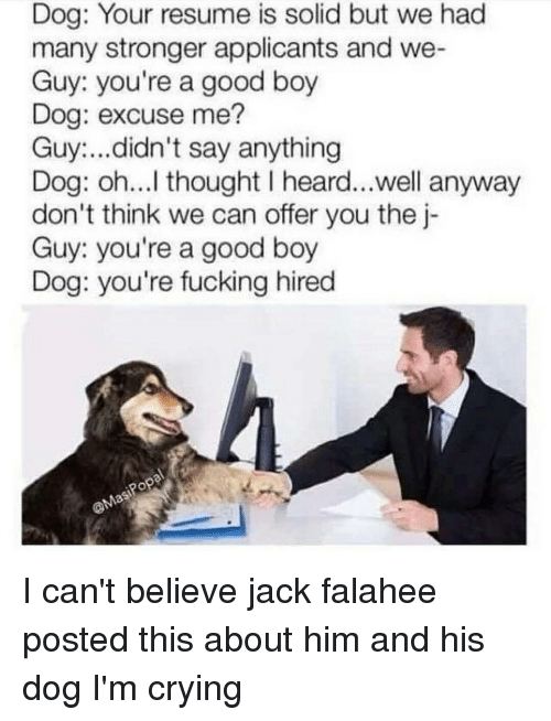 Crying, Fucking, and Memes: Dog: Your resume is solid but we had  many stronger applicants and we-  Guy: you're a good boy  Dog: excuse me?  Guy ...didn't say anything  Dog: oh...I thought I heard...well anyway  don't think we can offer you the j-  Guy: you're a good boy  Dog: you're fucking hired  Popal  Mas I can't believe jack falahee posted this about him and his dog I'm crying
