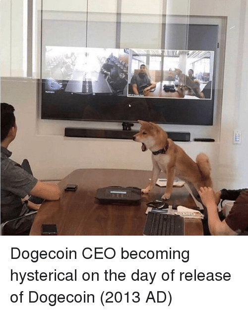 hysterical: Dogecoin CEO becoming hysterical on the day of release of Dogecoin (2013 AD)