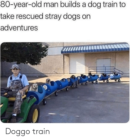Train: Doggo train