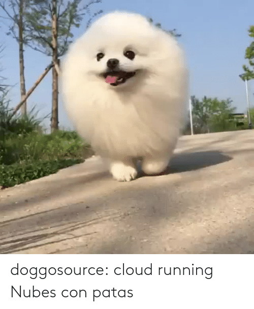 con: doggosource: cloud running   Nubes con patas