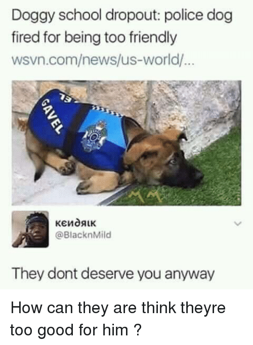 Wsvn: Doggy school dropout: police dog  fired for being too friendly  wsvn.com/news/us-world/  @BlacknMild  They dont deserve you anyway How can they are think theyre too good for him ?